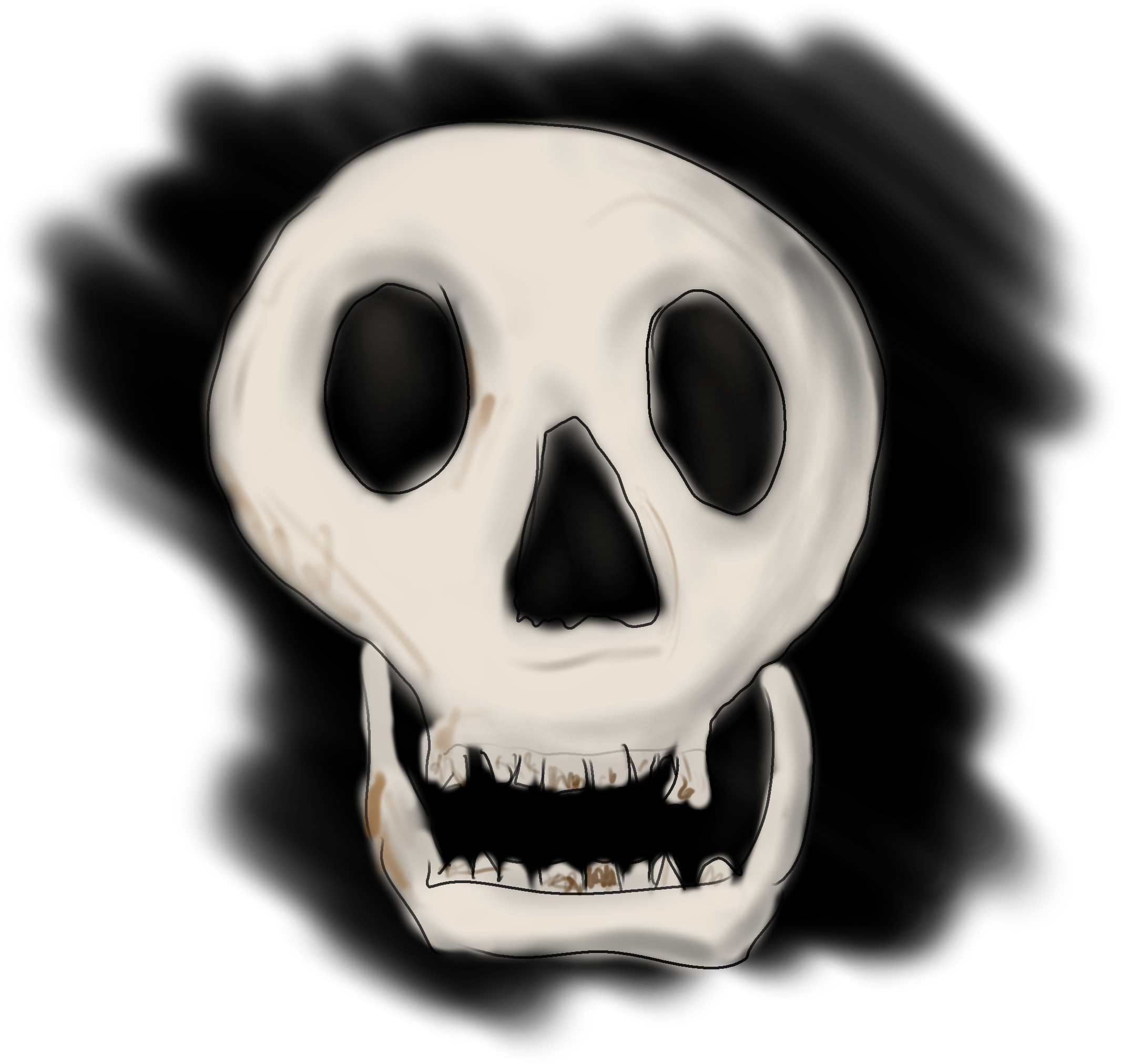 Drawing of a skull